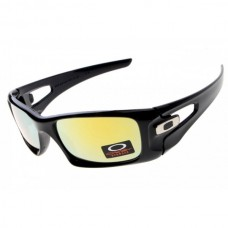 crankcase polished black / fire iridium sunglass