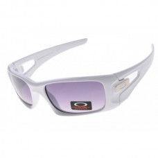 crankcase sunglass white / gray iridium