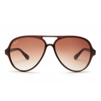 Ray Ban sunglasses RB4125 Cats 5000 Brown