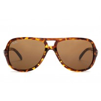 Ray Ban sunglasses RB4162 Cats 5000 Tortoise