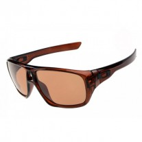 dispatch sunglasses brown / g28 iridium