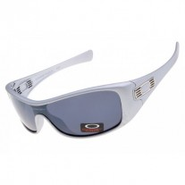 Antix sunglasses grey / gray lens