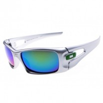 crankcase sunglasses silver / ice iridium