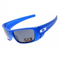 Fuel Cell sunglasses polished blue frame gray lens