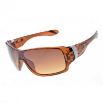 Offshoot sunglasses clear brown