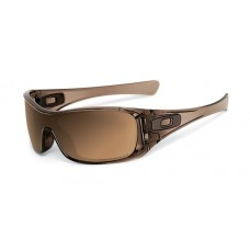 Antix Brown Smoke Tungsten Iridium Polarized Styles
