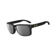 Holbrook SW Matte Black Grey Polar Sunglasses Collection