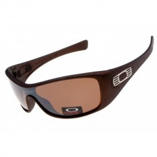 Antix sunglasses brown / g28 iridium