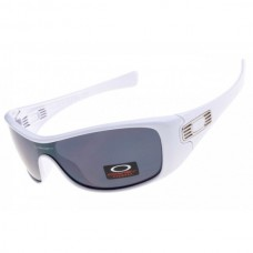 Antix sunglasses white frame gray lens