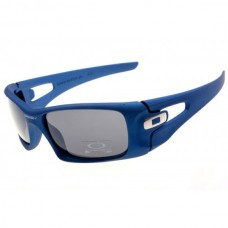 crankcase sunglasses matte blue / gray iridium