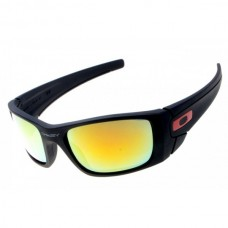 Fuel Cell sunglass black / fire iridium