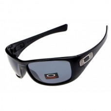Hijinx sunglasses polished black fram/ gray lens